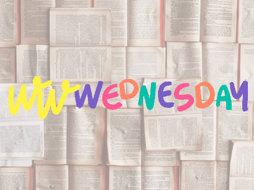 WWWednesday 10 – Le mie letture del momento